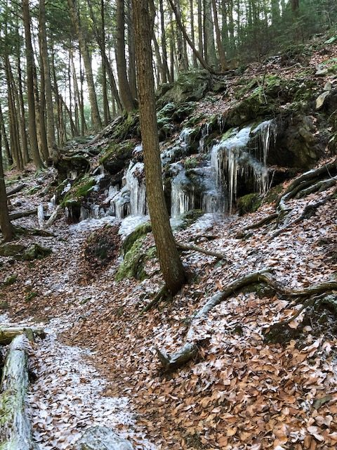 Ice cycles in Sages Ravine