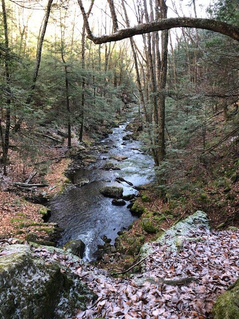 Creek in Sages Rivine