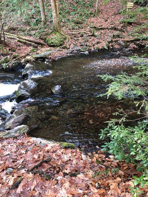 Creek Crossing in Sages Ravine