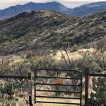 A Little Trail Magic - AZT | Average Hiker