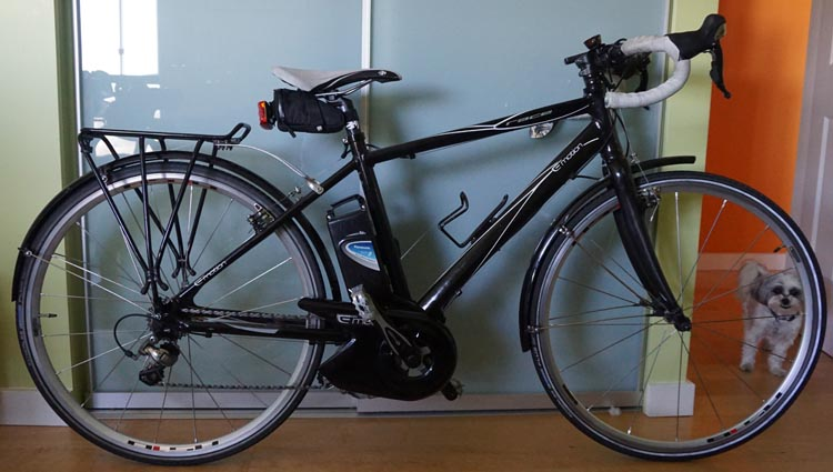 I used this photo to help sell my Panasonic BH Race bike online. Showing the actual bike in my home and including my dog was meant to reassure potential buyers that the bike was not stolen. How to buy used bikes online