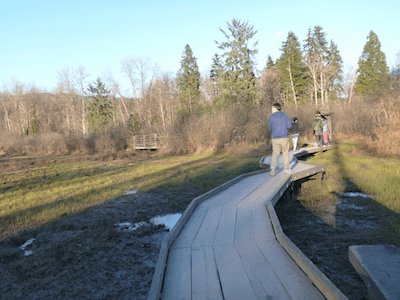 Walking on the board walk on the Shoreline Trail, Rocky Point Park. Shoreline Trail in Rocky Point Park, Port Moody, BC, Canada – Guide and videos