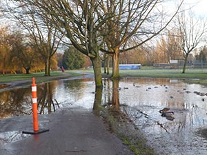 An impromptu lake, complete with ducks, blocking a bike route - no more active transportation