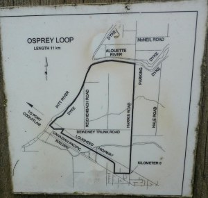 Map of the Osprey Loop dog friendly trail