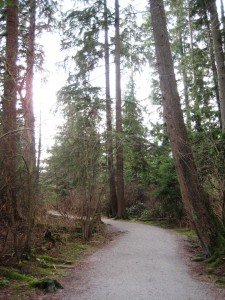 Deer Lake Park Bike Trails in Burnaby, BC, Canada - Guide plus Videos. Beautiful tree-lined tracks in the heart of Deer Lake Park. Deer Lake Park Bike Trails in Burnaby, BC, Canada