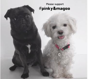 Pinky-Magoo-organic-vegan-foundations