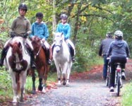 Galloping-Goose-Trail-horses-and-cyclists