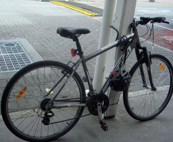 We noticed that all bikes were locked up in a trusting way with flimsy locks in Brisbane - very impressive