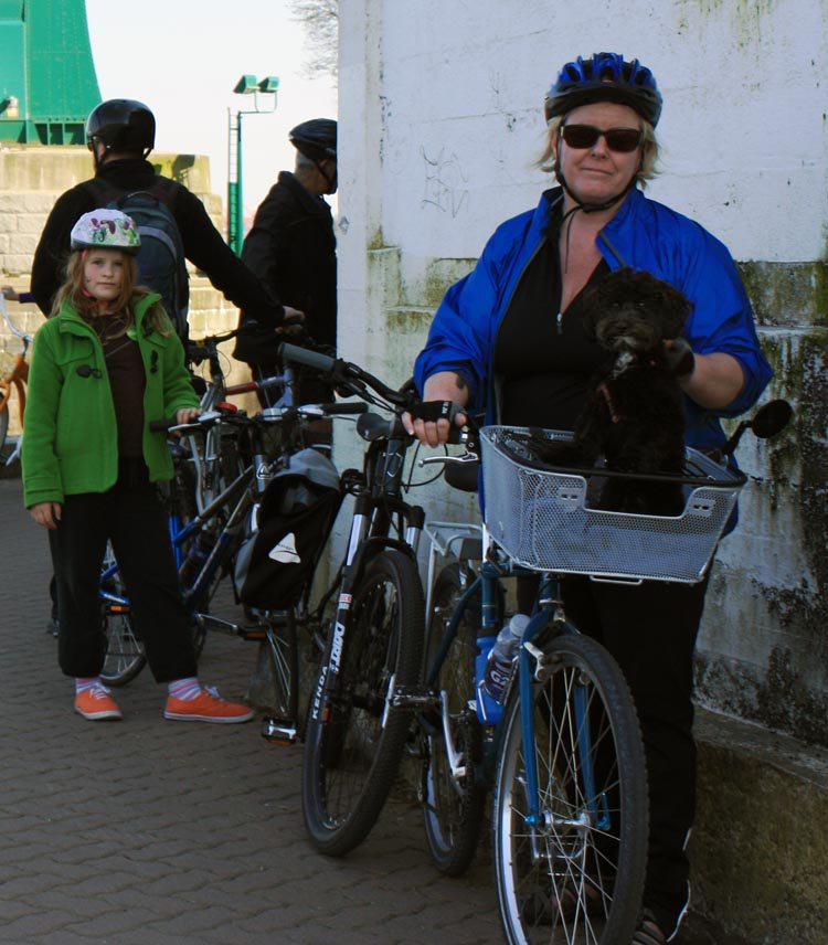Billy became too tall for his pet basket (Billy is the black blob in the basket). How to Carry your Dog Safely on Your Bike in a Pet Basket
