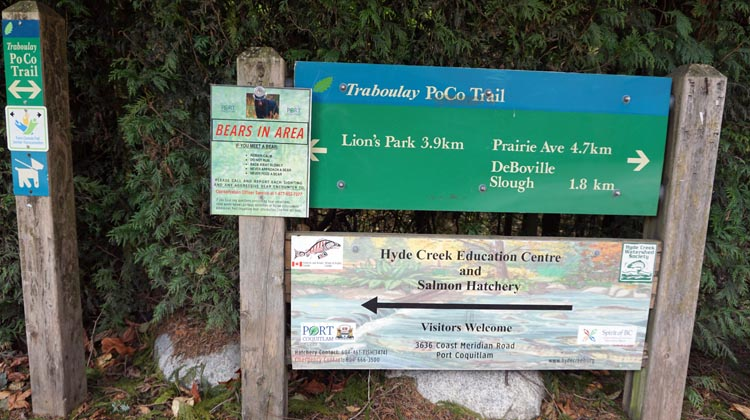 The Poco Trail is a really great cycling trail