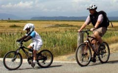Average Joe Cyclist's Complete Bike Training Plan