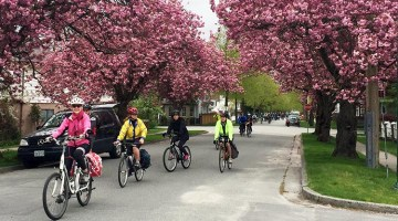 Another Great Bike the Blossoms Ride in Vancouver