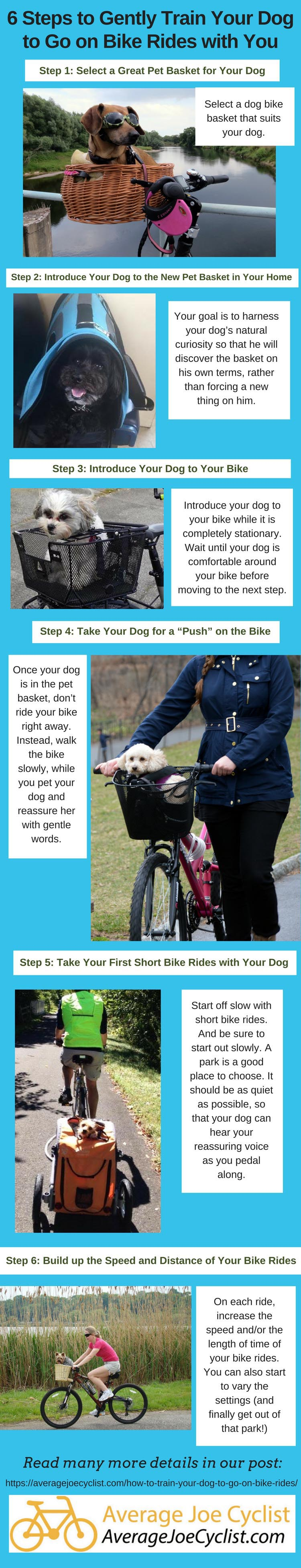 6 steps to gently train your dog to go on bike rides with us