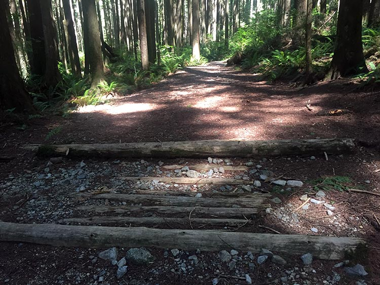 Cycling near Buntzen Lake, British Columbia, Canada. Some parts of Academy Trail are especially challenging. You will definitely need a mountain bike