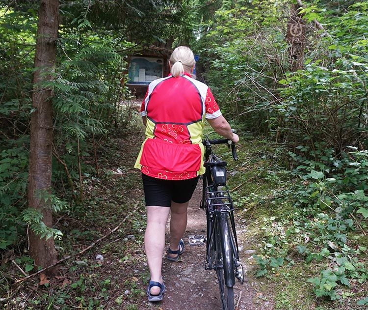 Review of Plus Sized Cycling Gear by Mrs. Average Joe Cyclist. The Conviction Cycling Jersey is long at the back, which I like