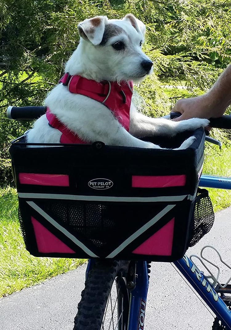 5 of the Best Dog Bike Baskets to Safely Take Your Dog Cycling in 2020. The very unusual thing about the Pet Pilot dog bike basket is that it is a front-mounted basket that is designed to carry dogs up to 20 lb, without swaying