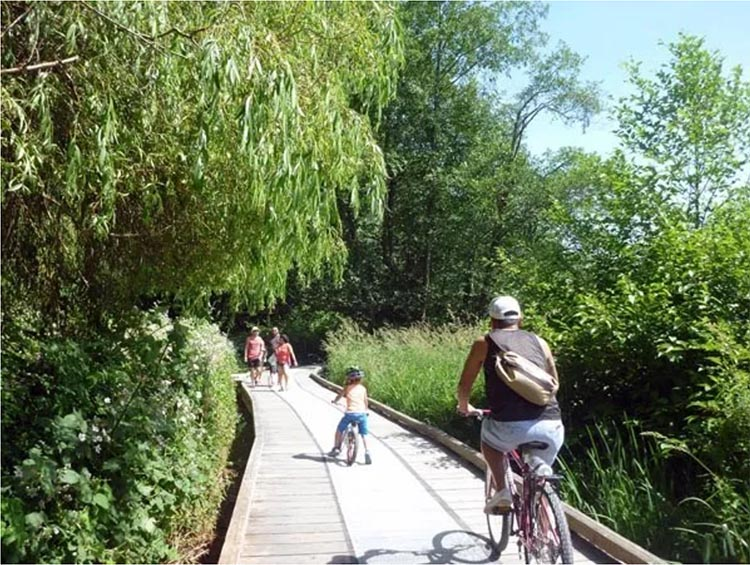 Burnaby Cycling - Great Bike Rides in and Near Vancouver, Canada. The boardwalks add a fun touch to a family bike ride besides Deer Lake in Burnaby