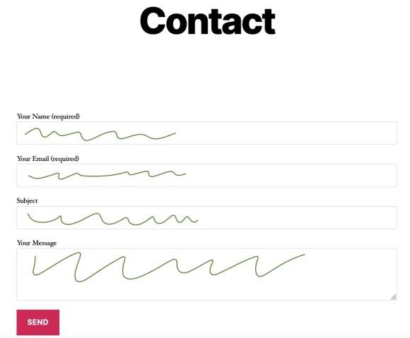 contact form webmaster