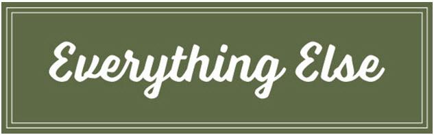 retiring everything else 4-18-2016 6-07-42 PM