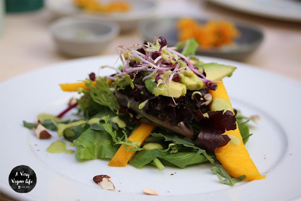 Salad-Mango-Avocado