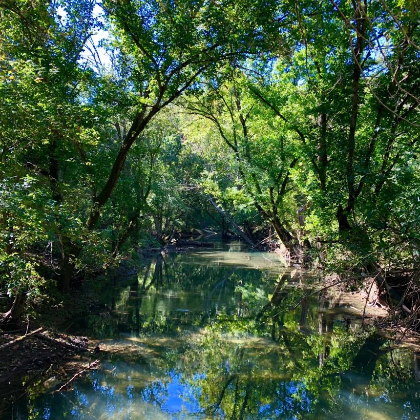 cherokee park louisville