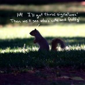 Lobbyist Squirrel, 33
