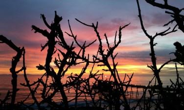 Carpinteria Bluffs Sunset Hike