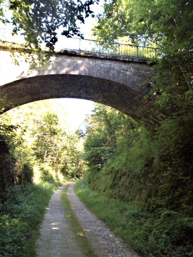 Des paysages bucoliques traversés sur la voie verte