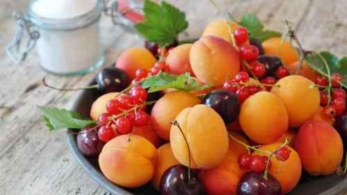 как увеличить урожай абрикосов