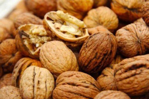 Как посадить грецкий орех и заработать на плодах