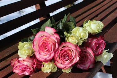 Укоренение розы с букета