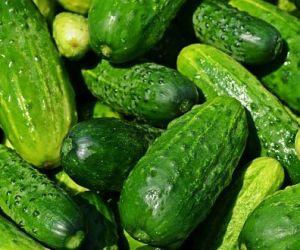 5 способов увеличить урожай огурцов