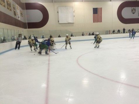 Girls Hockey Falls to Strong Eagan Team