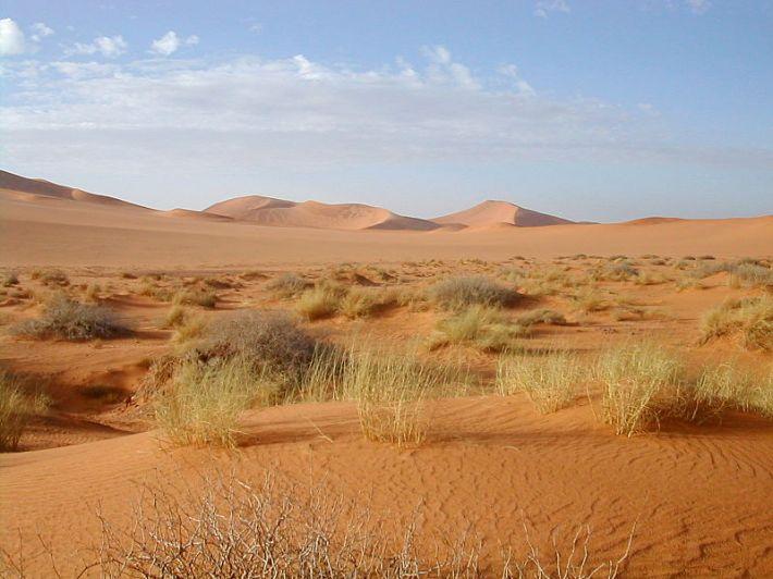 800px-Sahara