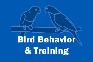 Bird Behavior & Training
