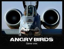 Funny and angry birds 1