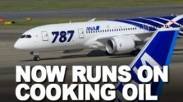 Passenger jets will soon run on cooking oil and fat 34