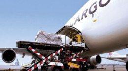 IATA: November peak season air freight demand up 8.8% 13