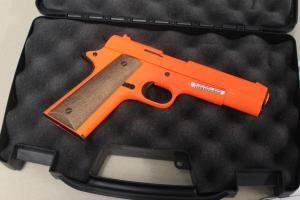 Read the petition: Firearms on airplanes