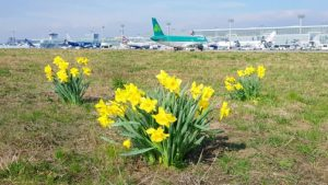 Easter School Holidays ring in busy travel season at Frankfurt Airport
