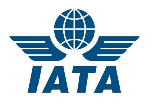 2019 IATA Global Airport & Passenger Symposium: Building capacity for the future
