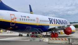 Ryanair hopes Boeing's troubled 737 MAX jet returns to service next month 14