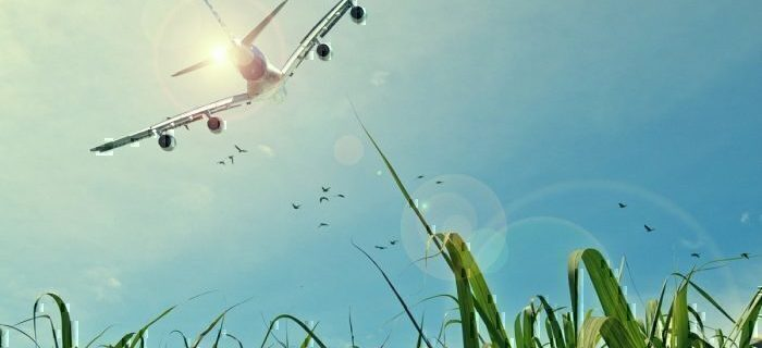IATA: Tax is Not the Answer to Aviation Sustainability 1