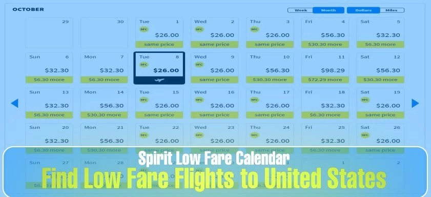 Spirit Low Fare Calendar: Flight Deal Finder – All you need to know