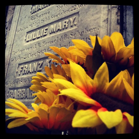 Sunflowers for Lillie Mary