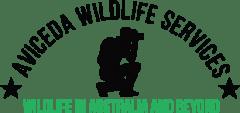 Wildlife North Brisbane