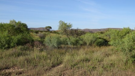 Views between Blinman and Arkaroola