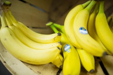 close up photo of bananas