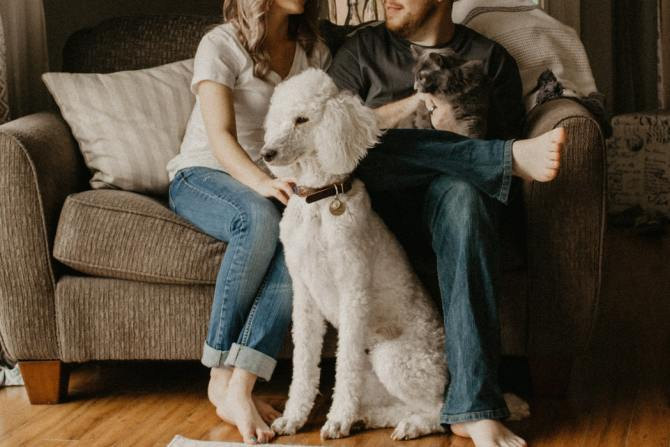 couple-sitting-on-couch-while-white-poodle-sits-in-front-of-them-and-man-holds-dark-cat=on-lap