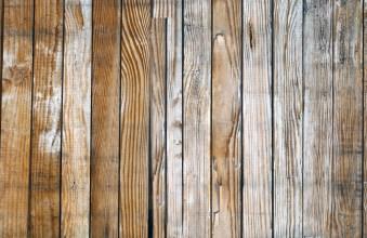 Wood #5